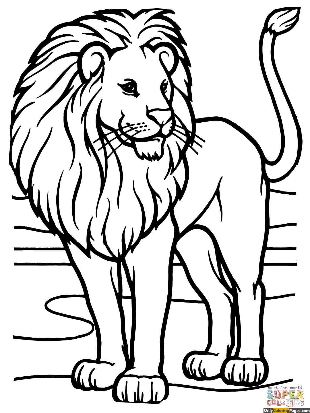 Lion Coloring Pages African Lion