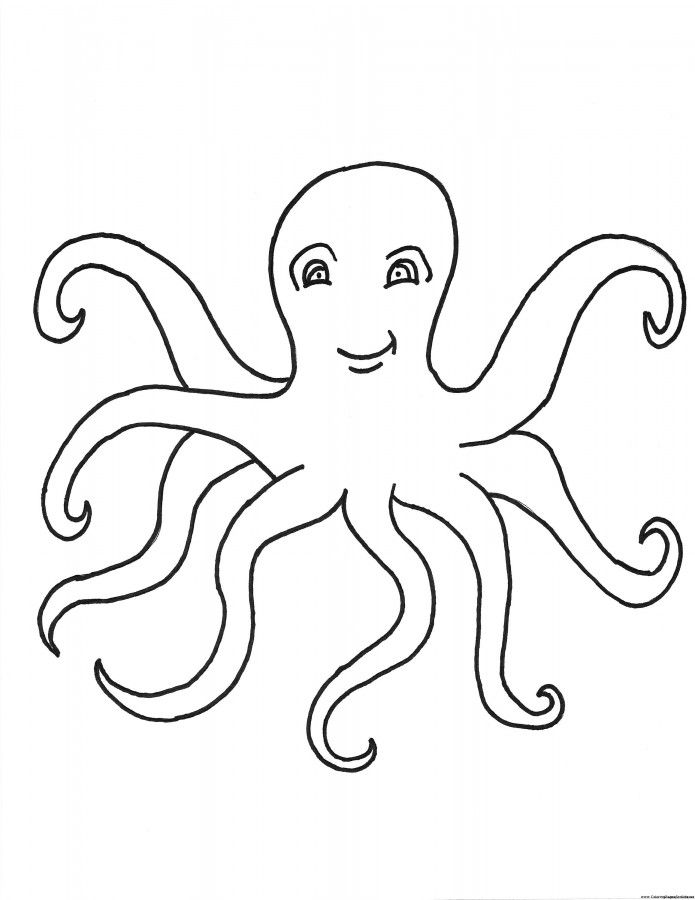 online Free Printable Octopus Coloring Pages For Kids already colored
