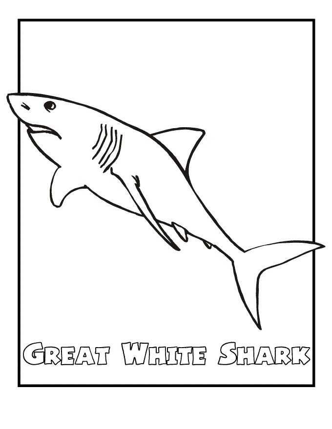 free Free Printable Shark Coloring Pages For Kids easy