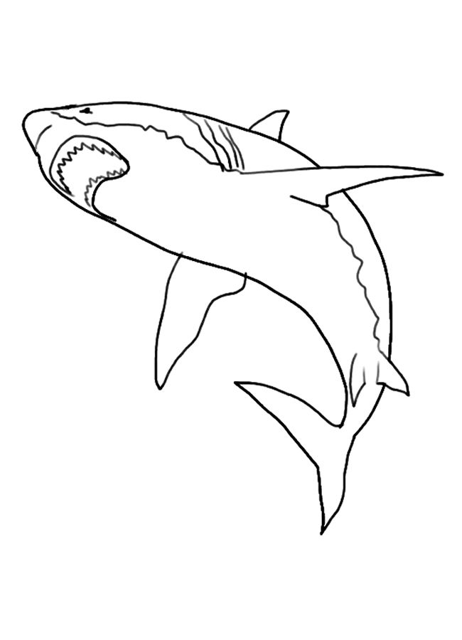 free Free Printable Shark Coloring Pages For Kids for teens