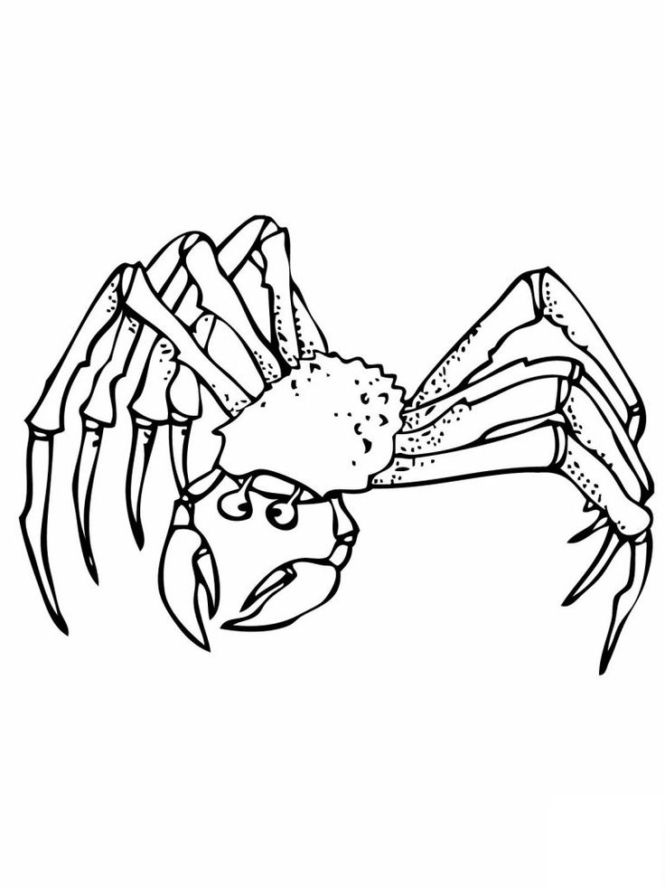to print out Free Printable Crab Coloring Pages For Kids for girls