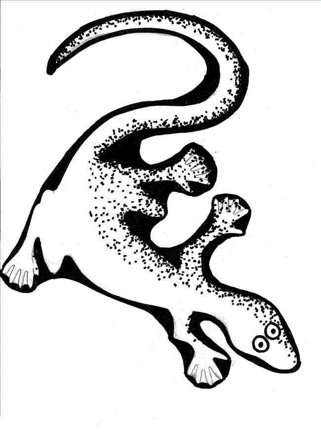 online Free Printable Lizard Coloring Pages For Kids pdf