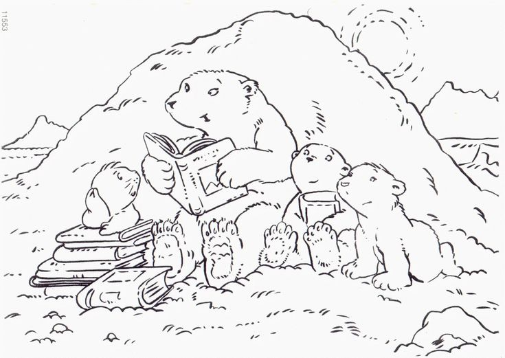 to print out Free Printable Polar Bear Coloring Pages For Kids for boys