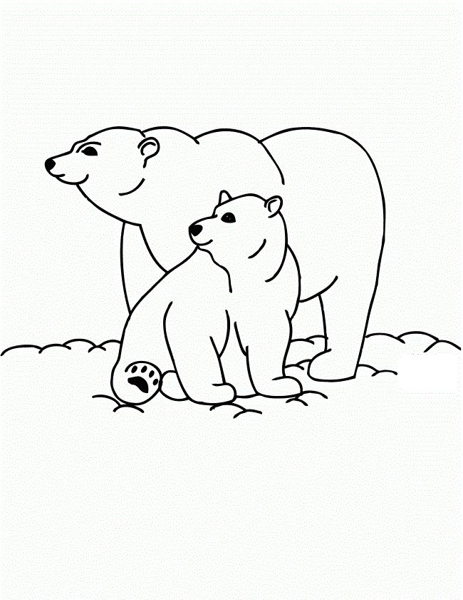 online Free Printable Polar Bear Coloring Pages For Kids for boys