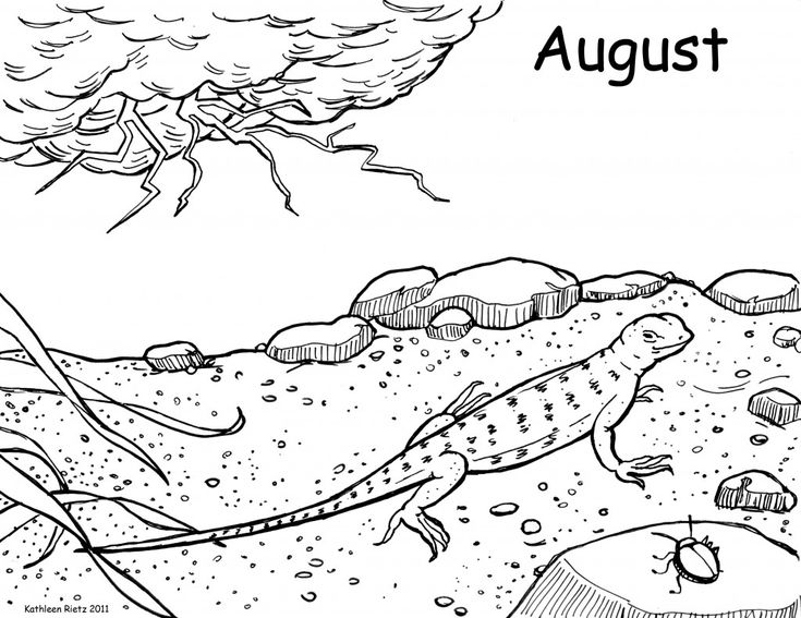 for sunday school Free Printable Lizard Coloring Pages For Kids free