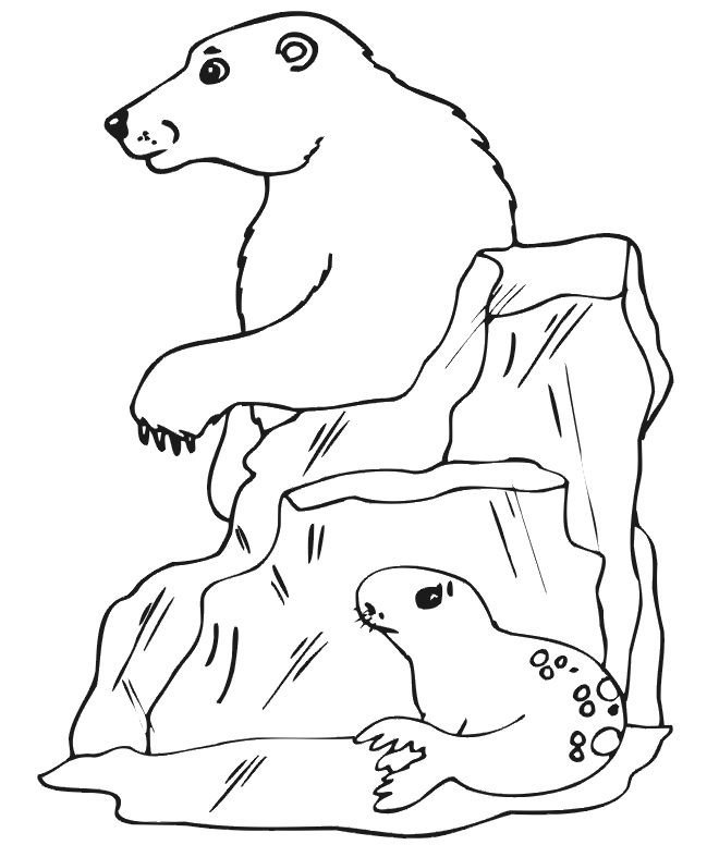 online Free Printable Polar Bear Coloring Pages For Kids for kids