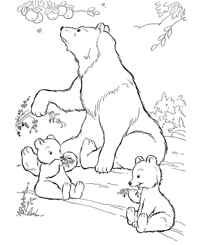 for girls Free Printable Polar Bear Coloring Pages For Kids online