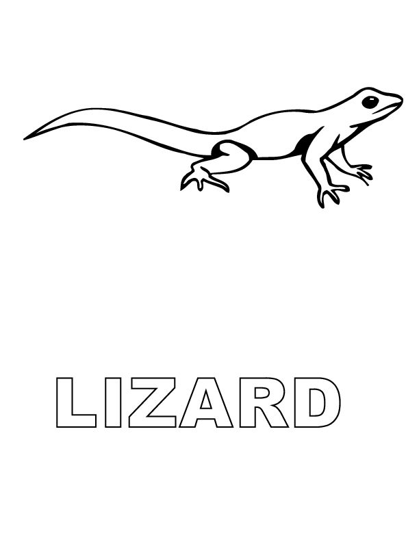 printable Free Printable Lizard Coloring Pages For Kids for kindergarten