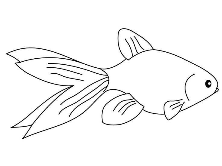 for sunday school Free Printable Goldfish Coloring Pages For Kids for sunday school