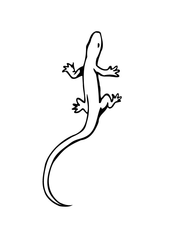free Free Printable Lizard Coloring Pages For Kids printable