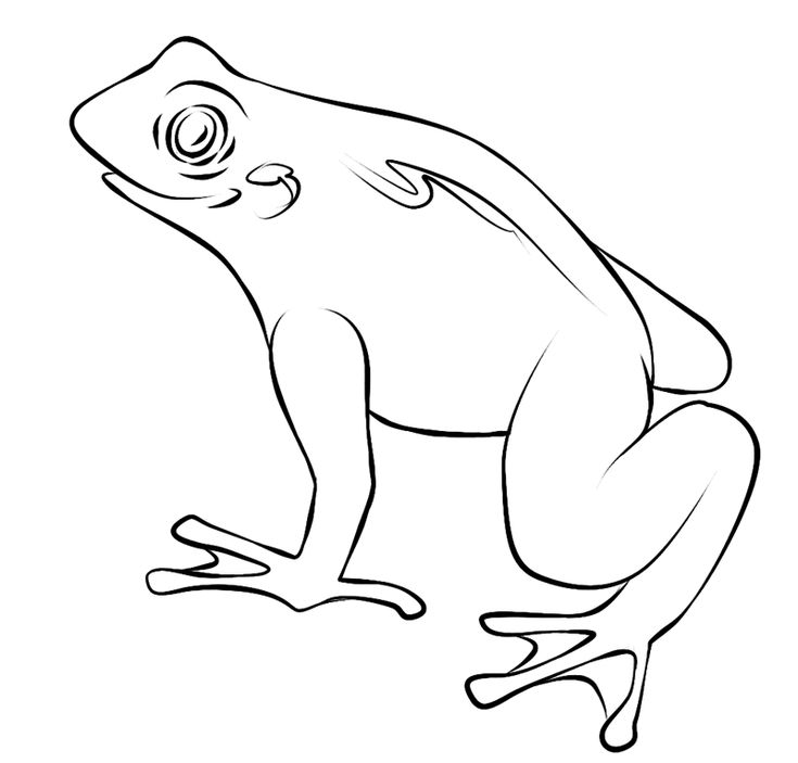 for sunday school Free Printable Toad Coloring Pages For Kids easy