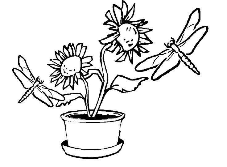 to print out Free Printable Dragonfly Coloring Pages For Kids printable