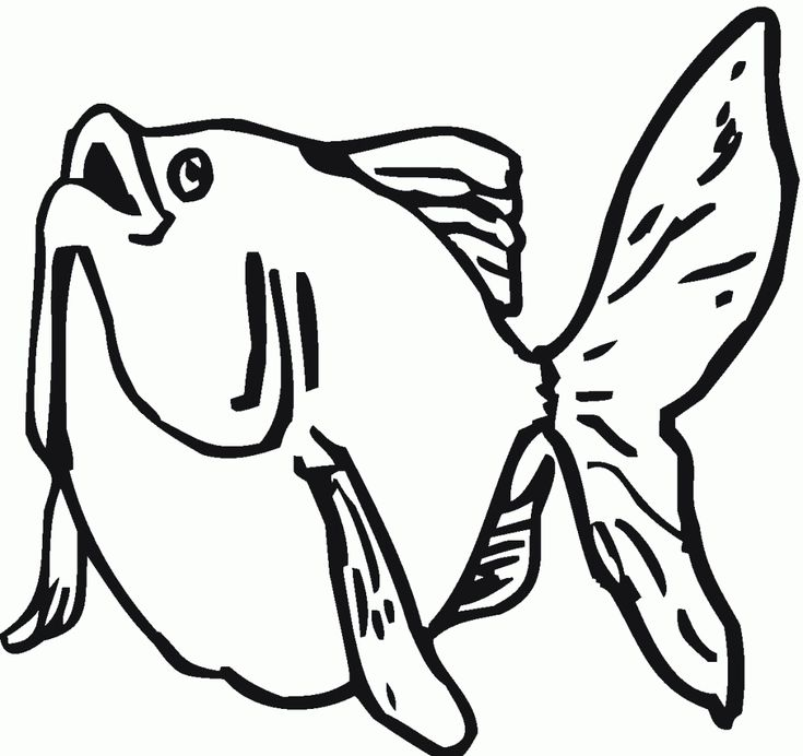 pdf Free Printable Goldfish Coloring Pages For Kids to print out