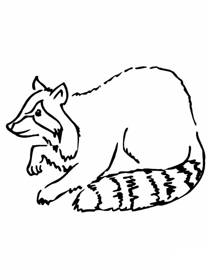 for boys Free Printable Raccoon Coloring Pages For Kids preschool