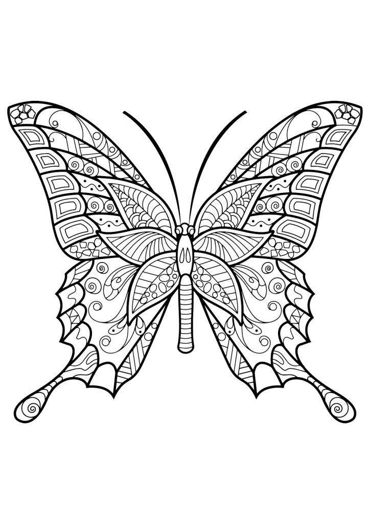 printable Butterfly Coloring Pages for Adults - Best Coloring Pages Fo... preschool