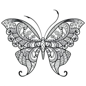 free printable Butterfly Coloring Pages for Adults - Best Coloring Pages Fo... for toddlers